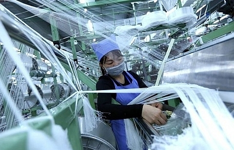 Private sector should be pillar of Vietnam economy: expert