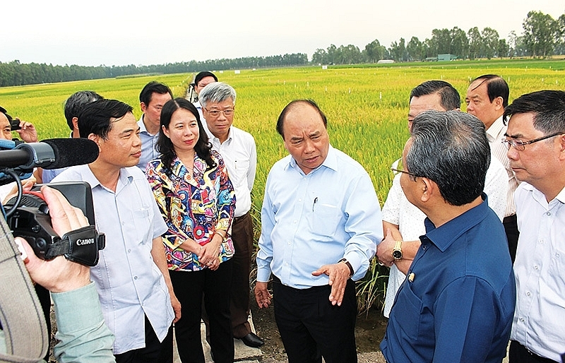 Fertile land for high-tech agriculture