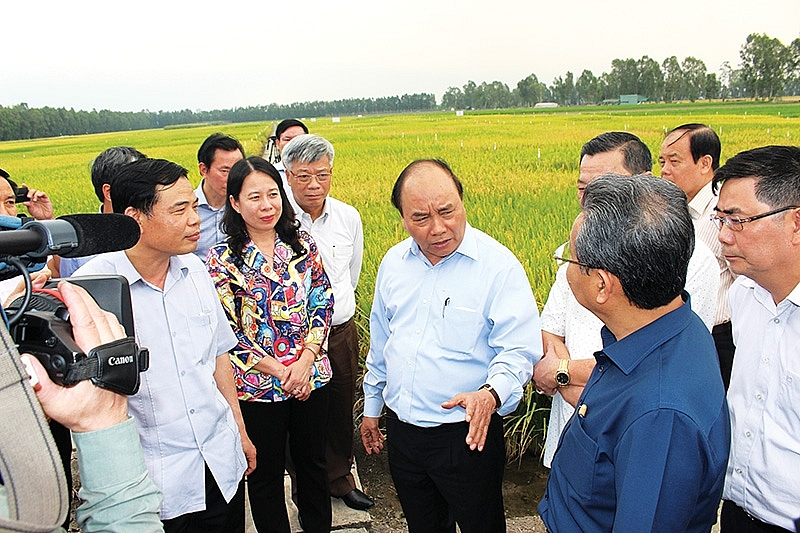fertile land for high tech agriculture