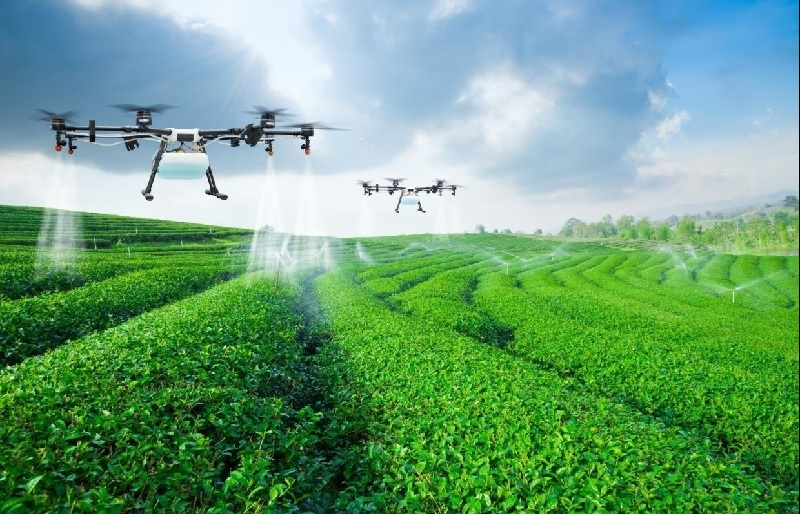 Digital transformation key driver for agriculture