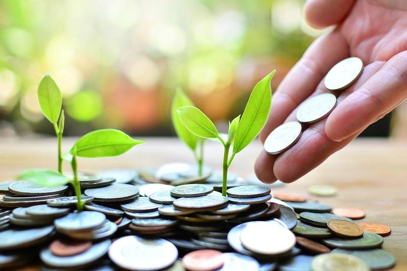 institutions shift to greener methods