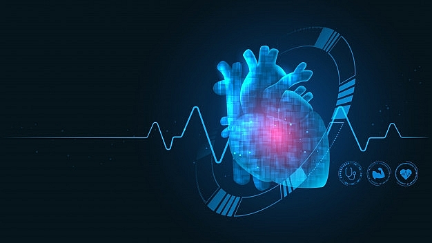 bayer and nhcs to set up centre of excellence for explorative cardiovascular studies