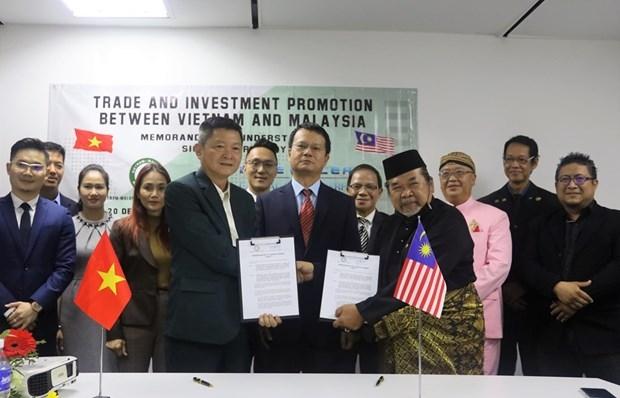 Vietnamese, Malaysian enterprises boost cooperation