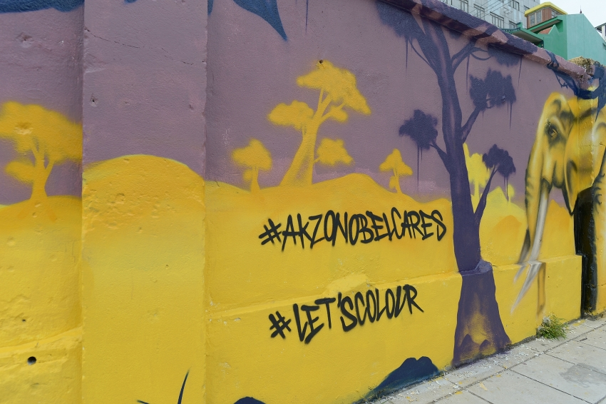 akzonobel uses power of colour to advocate wildlife conservation