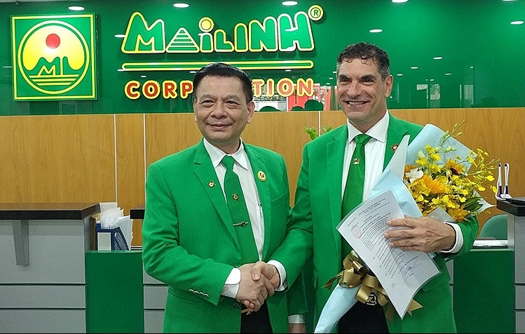 CEO of Mai Linh Group dismissed