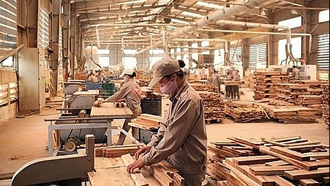 EU welcomes Decree on Timber Legality Assurance System of Vietnam