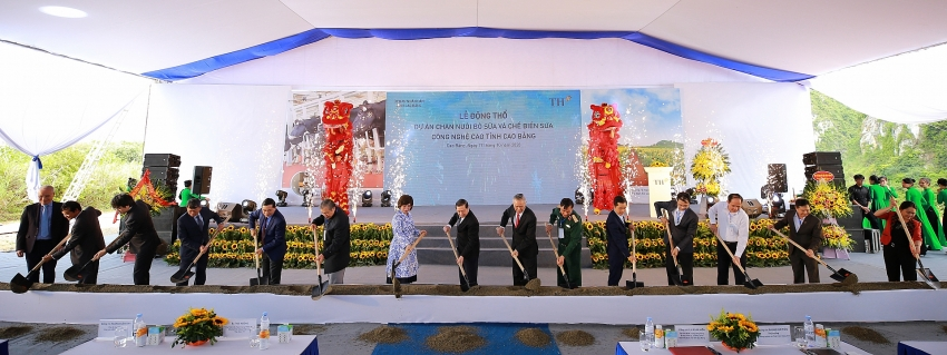cao bang milestone on th groups strategy to cover dairy map in vietnam