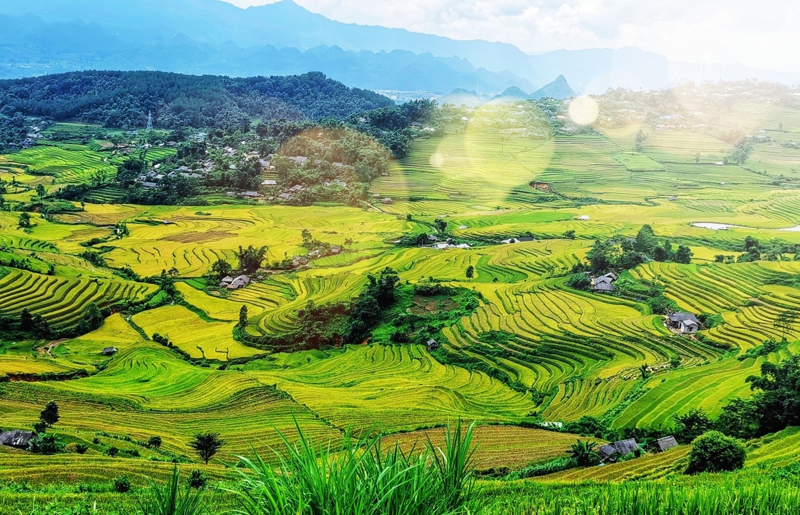 VNDIRECT predicts Vietnam's GDP growth of 3.9 per cent in 2021