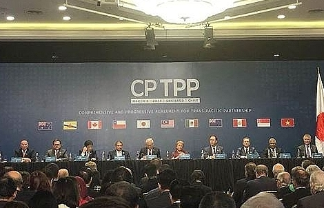Moody's: CPTPP benefits shortened without US