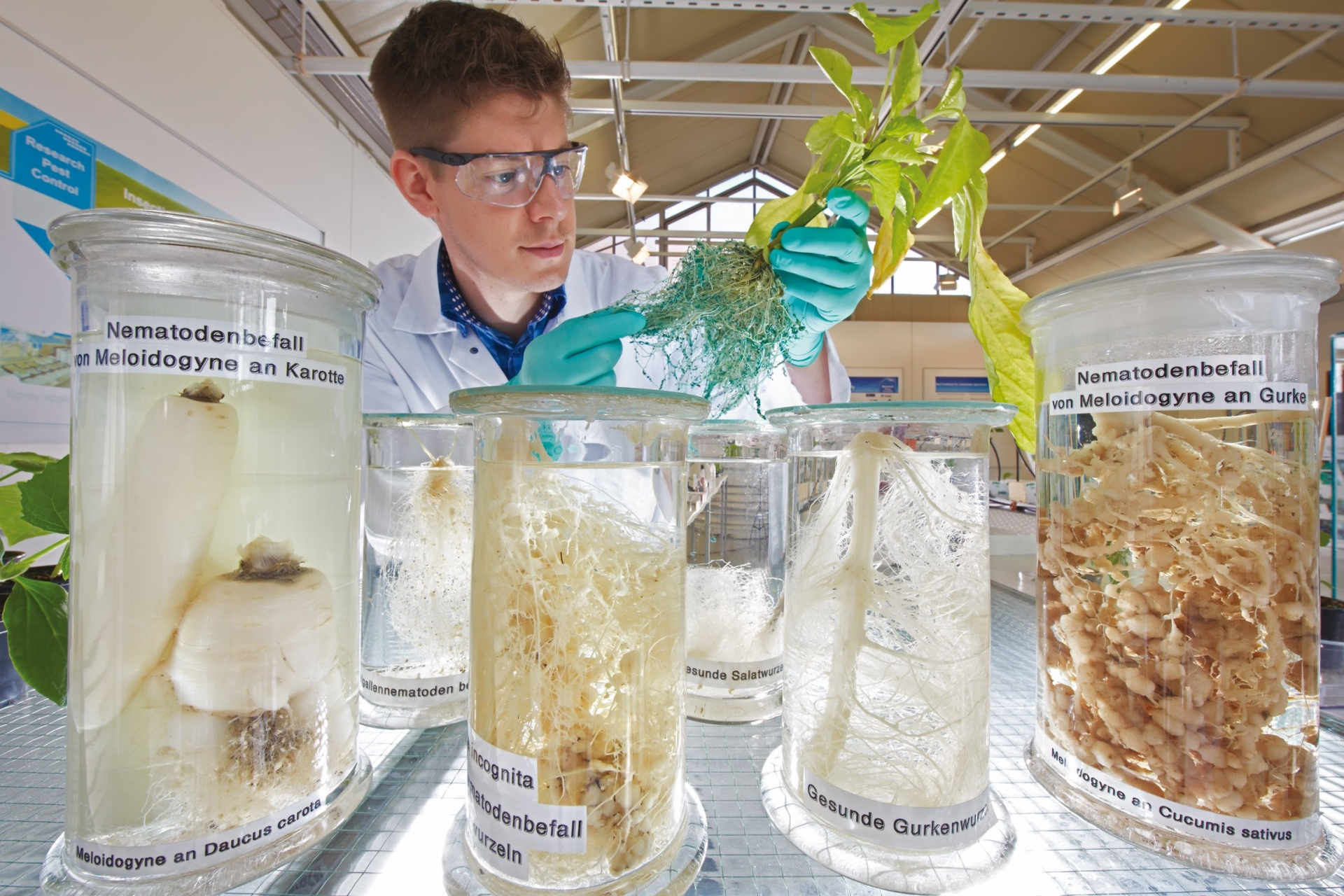 Bayer driving sustainable agriculture with industry-leading pipeline