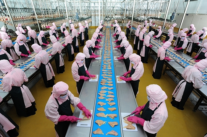 cp vietnam nations first to export processed chicken to russia