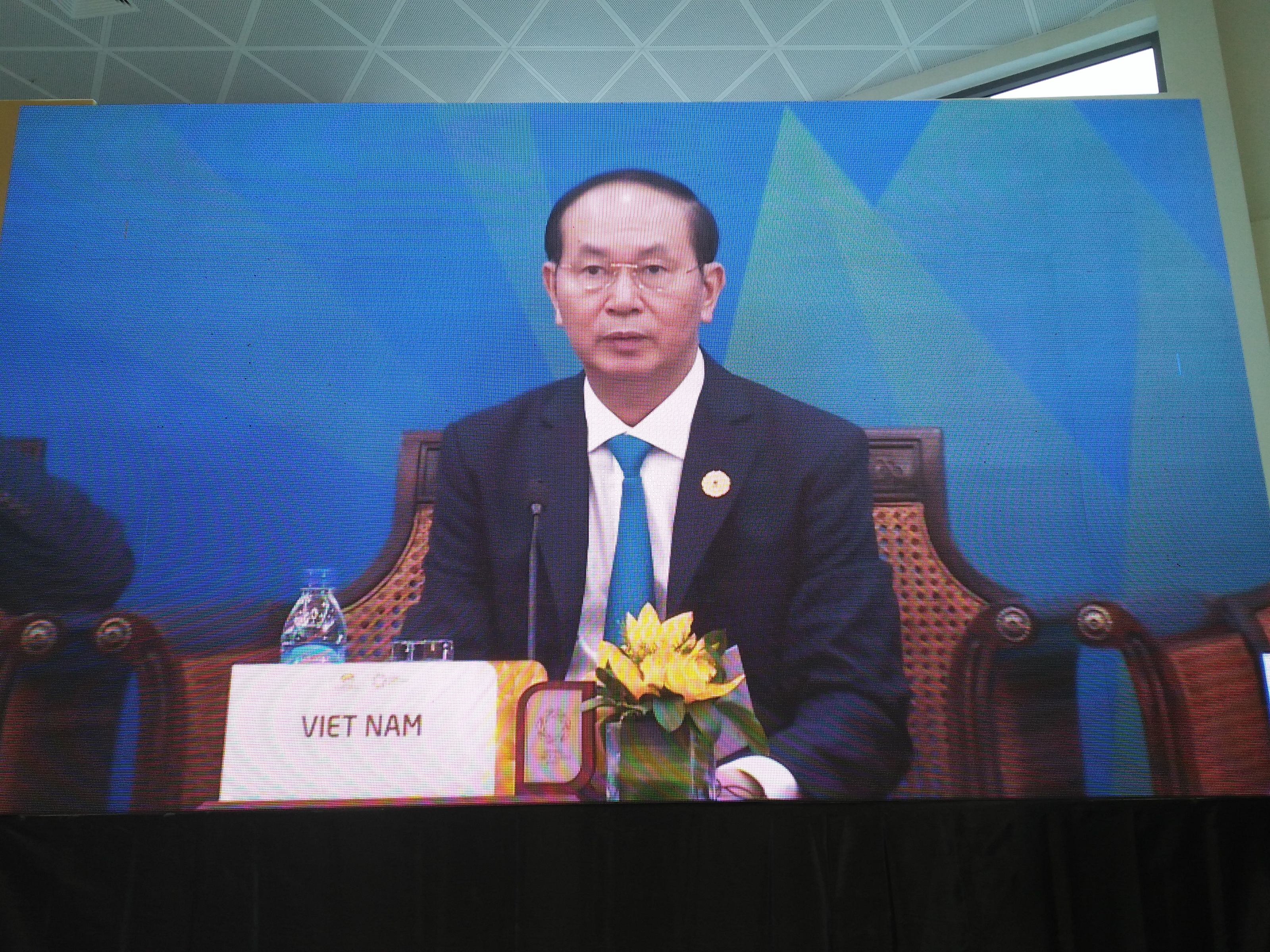 Vietnam offers commitments to beef up APEC co-operation