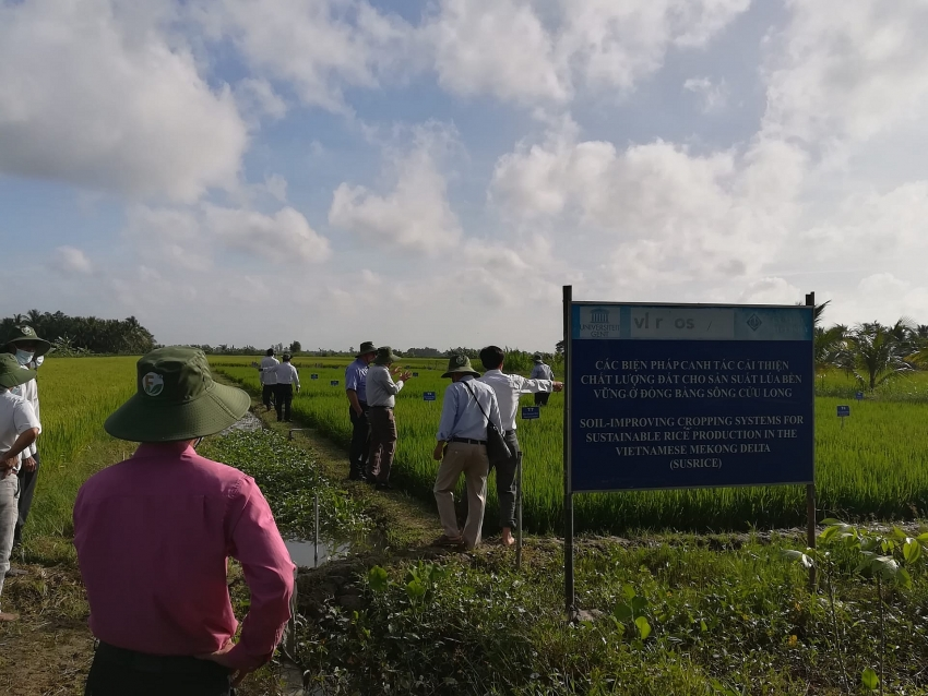 belgian susrice project shares findings with local farmers
