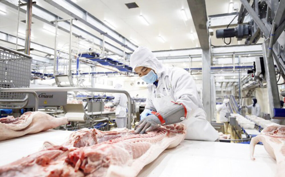 Russia's AVG Capital to develop $1.4 billion pork processing complex in Thanh Hoa