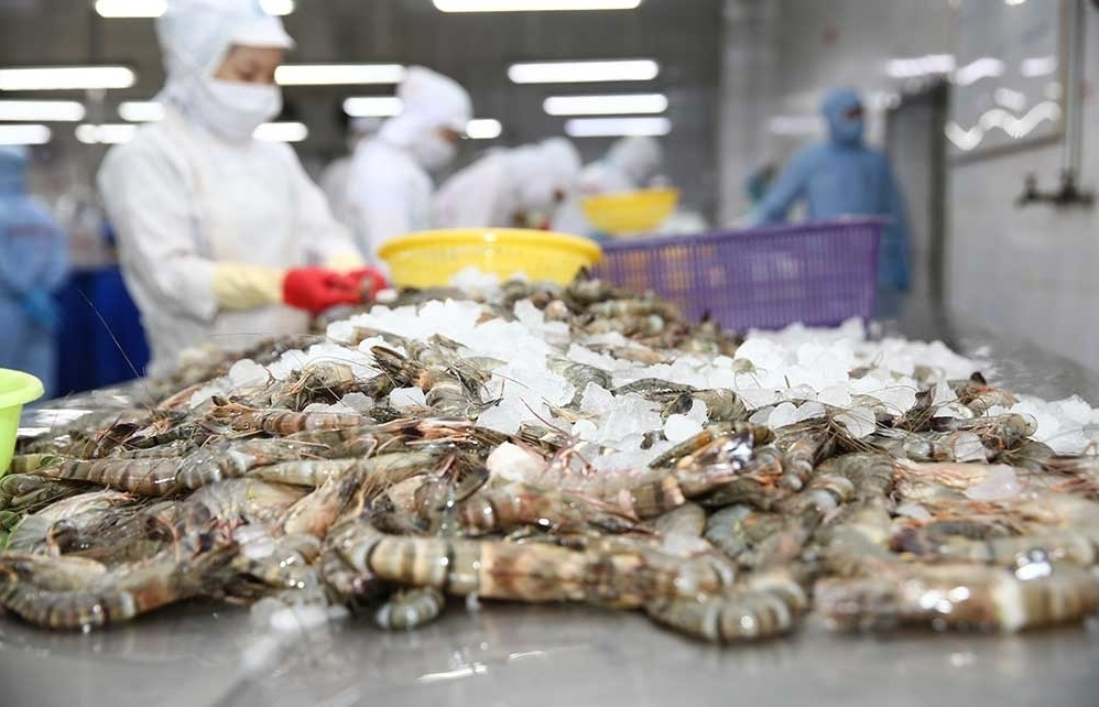 US removes anti-dumping tax on Minh Phu shrimp