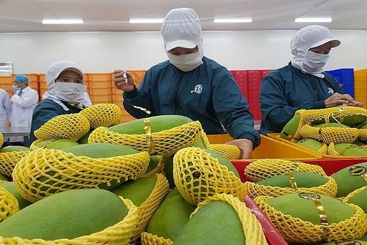 ukvfta boosts bilateral trade growth between vietnam and uk