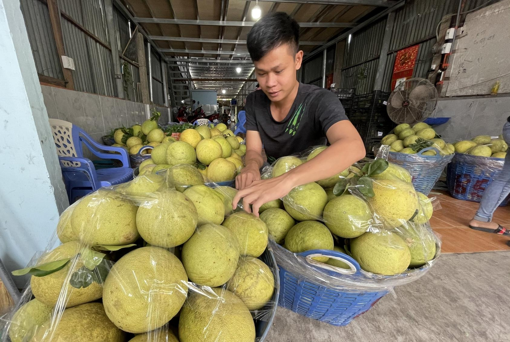 Leverage for Vietnam's agricultural products to take off