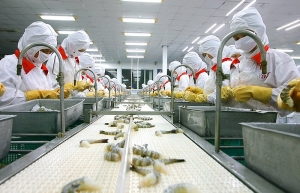 Seafood exports in first half reach more than $4.1 billion