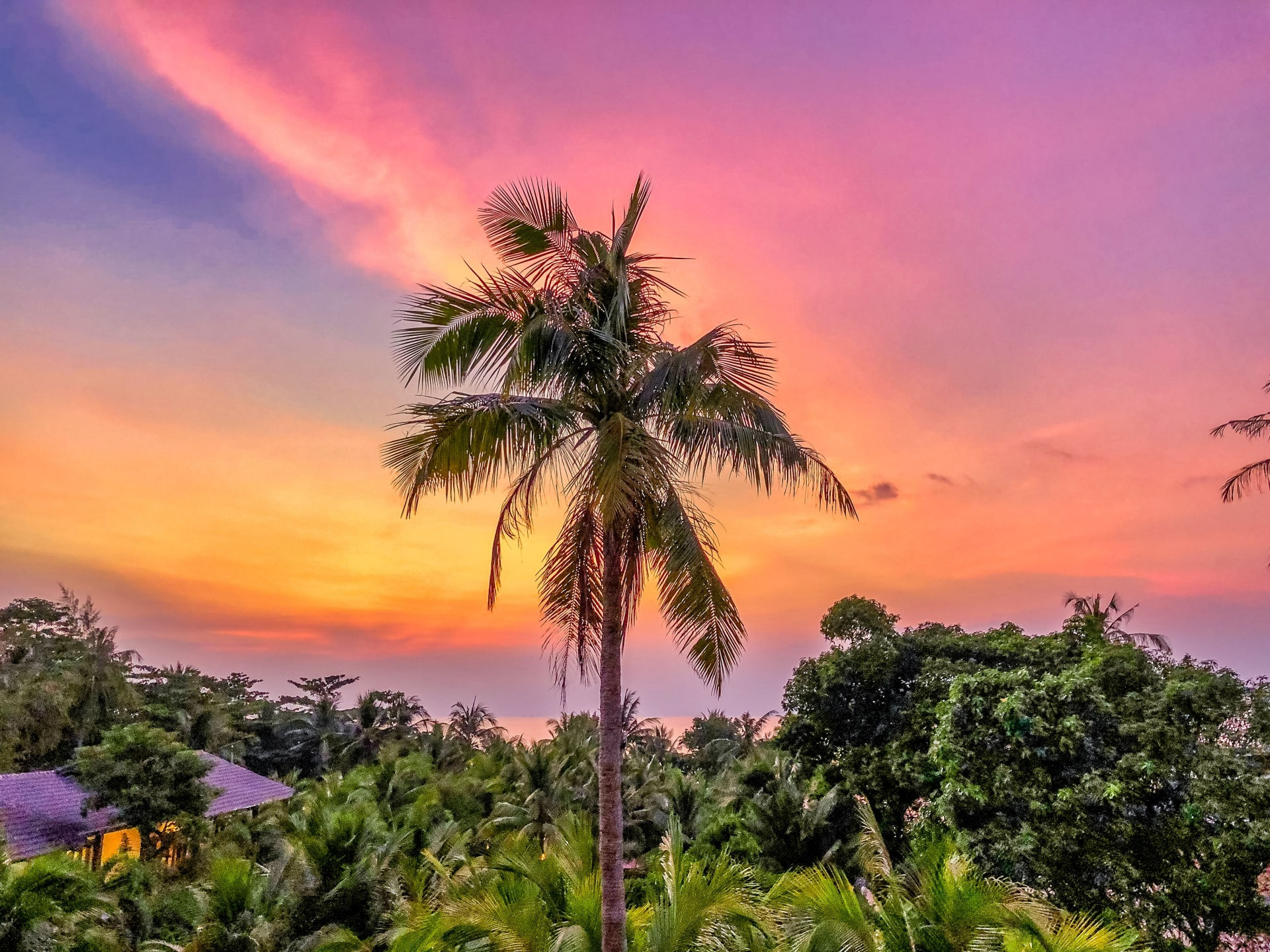 Government approves pilot plan to reopen Phu Quoc for international tourists