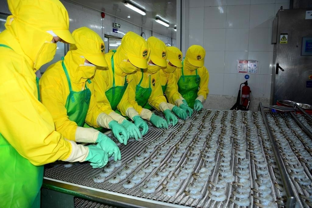 Vietnamese seafood imports from India skyrocket in first eight months