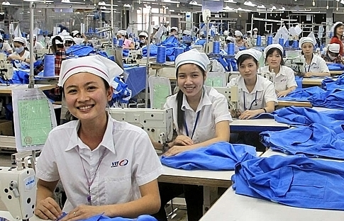 Viet Tien foresees 70 per cent drop in profit due to COVID-19