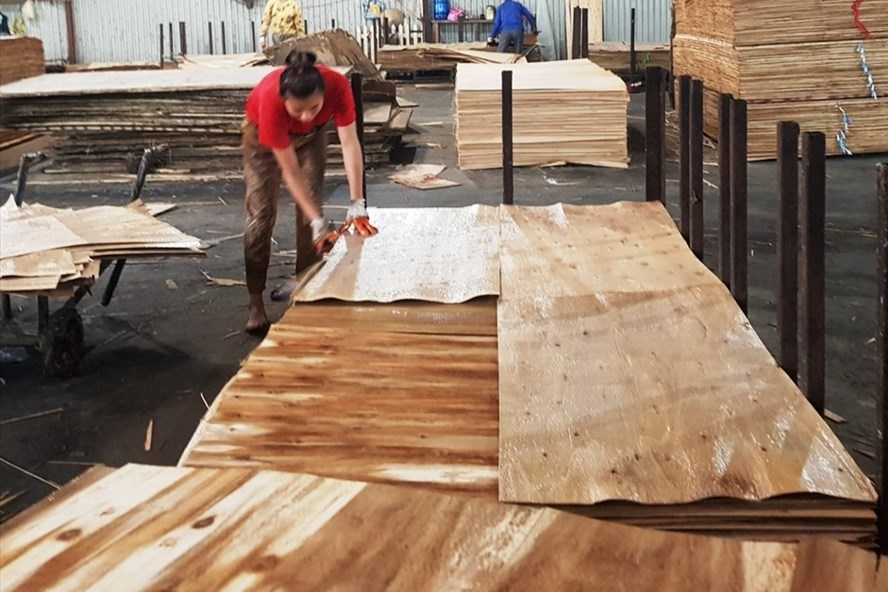 Vietnamese Plywood Branch wants to recheck the export of veneer products