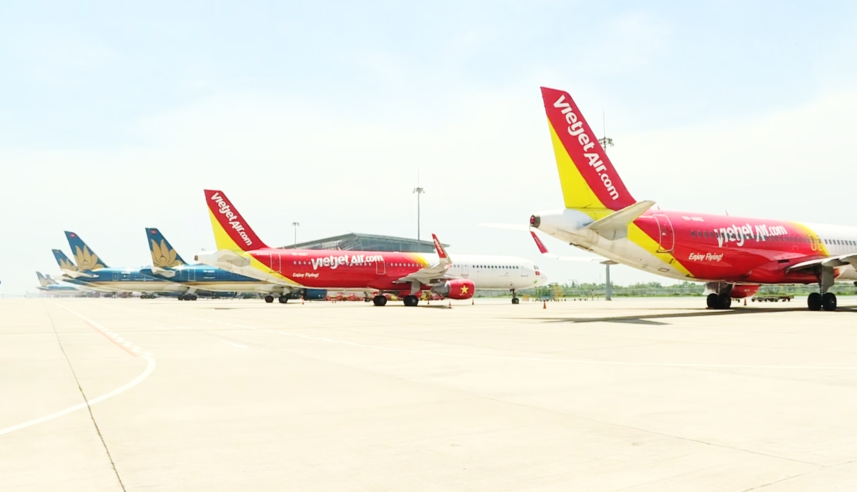 COVID-19 freezing flights, airlines struggling to survive